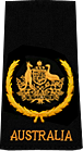 Warrant Officer of the Navy