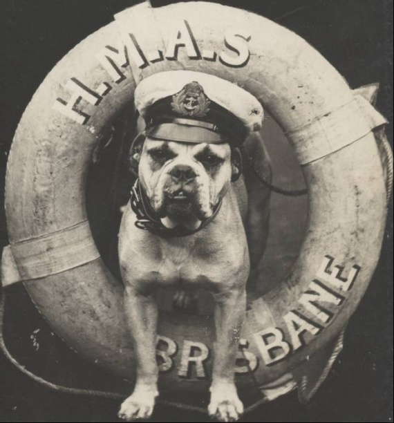 HMAS Brisbane ship's mascot