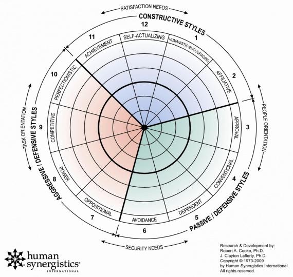 Circumplex image courtesy of Human Synergistics.