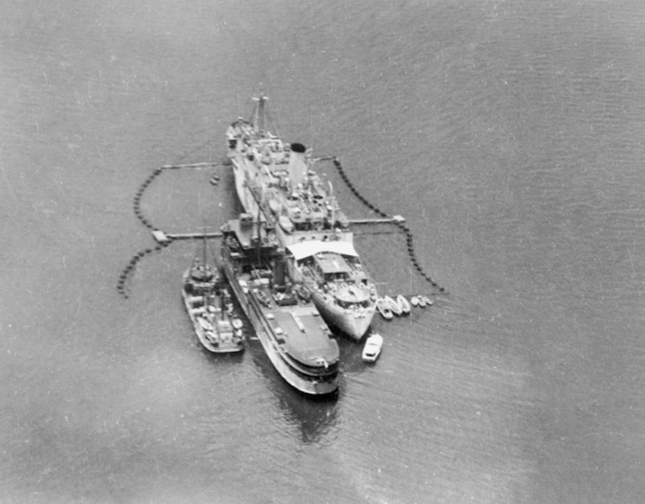 Allenwood nested alongside HMA Ships Ping Wo and Westralia, Salamander Bay, NSW, c. November 1942