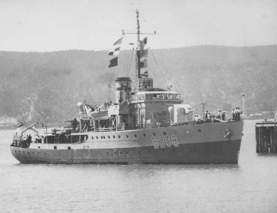 HMAS Burnie entering her namesake port in December 1945 wearing her British Pacific Fleet pennant number - B238.