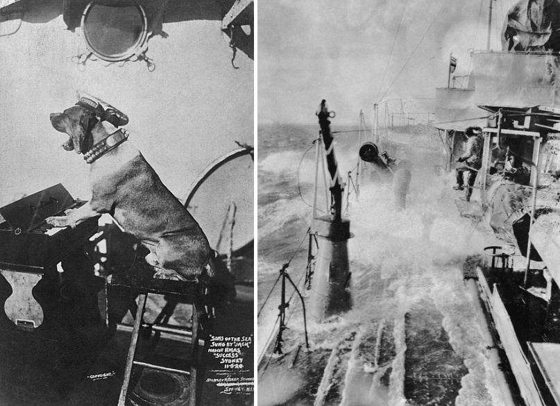 "Left: A dog wearing a studded collar and a naval cap with a HMAS Success tally band, appearing to play a small piano. Original caption reads ""Sons of the Sea' sung by 'Jack' mascot HMAS Success Sydney 11-5-20."" (AWM P09219.029)  Right: Success sweeping through rough seas, for torpedos fired from HMAS Canberra. (AWM P09219.006)"