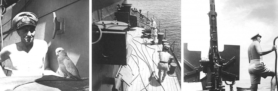 Left: Engineer Lieutenant JD Davidson and the ship's parrot (AWM 078150). Middle: Ratings checking the rewinding wire ropes on the winch drum. (AWM 078158) Right: The Officer of the Watch aboard Kiama. (AWM 078159)