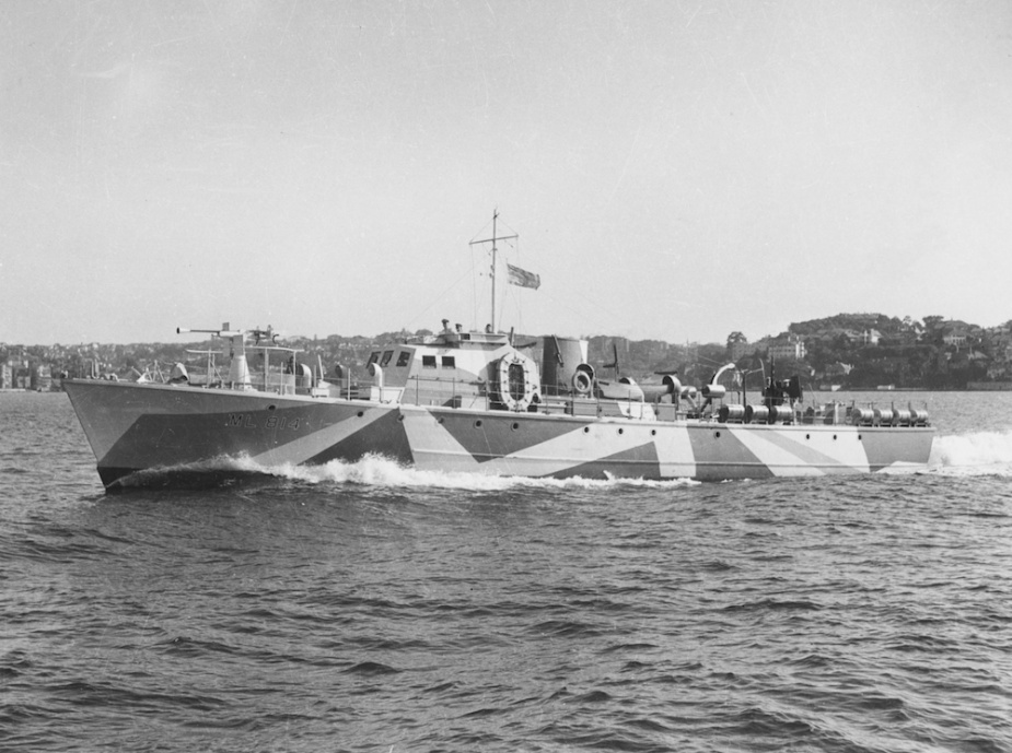 ML 814 wearing her distinctive disruptive pattern camouflage