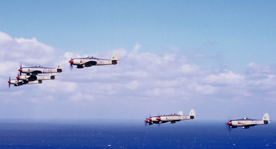 Sydney's Sea Furies in formation