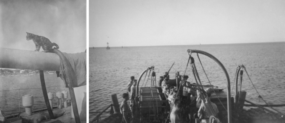 HMAS Toowoomba carried two mascots on board during World War II. Left: Digger. Right: A memorial service for the passing of Tiddles.