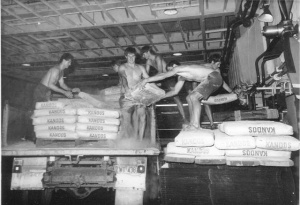 RAN sailors unloading bags of cement in Darwin.