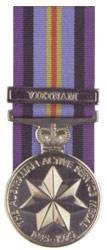 Active Service Medal Vietnam