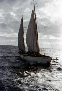 Sea Fox as found on the morning of 9 July 1959. (Courtesy Sam Bateman)