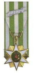 Vietnamese Campaign Star