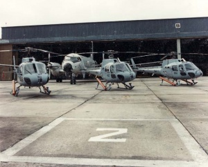 Squirrel helicopters and a HS748 in front 'B' Hangar at HMAS Albatross.