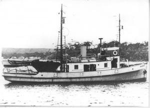 HMAS Warreen, circa 1950.