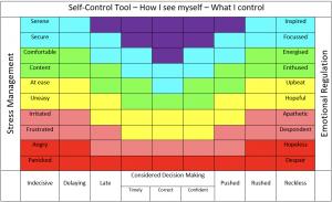 Figure 1: Self Control Reflective Tool.