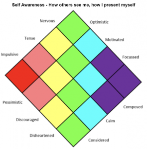Figure 2: Self-Awareness Reflective Tool.