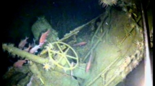 HMA Submarine AE1 found feature image