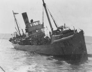 HMAS Beryl (II)
